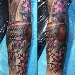 Sparrow Cherry blossom
